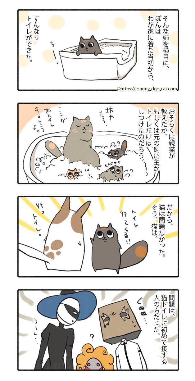 家猫たちのトイレ事情2