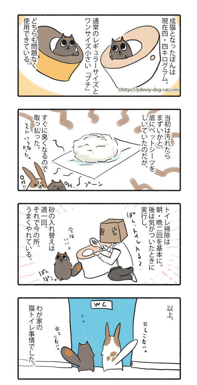 家猫たちのトイレ事情6
