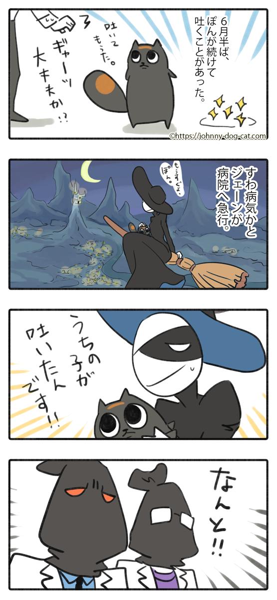 吐いた家猫1