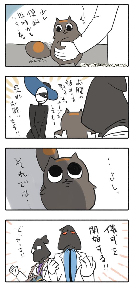 吐いた家猫4