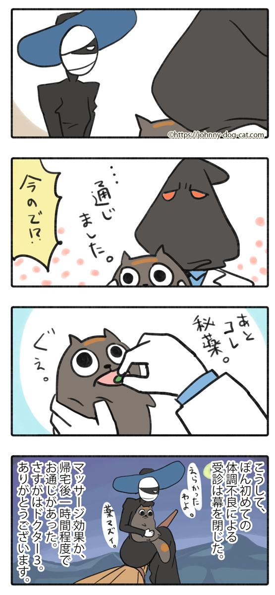 吐いた家猫7